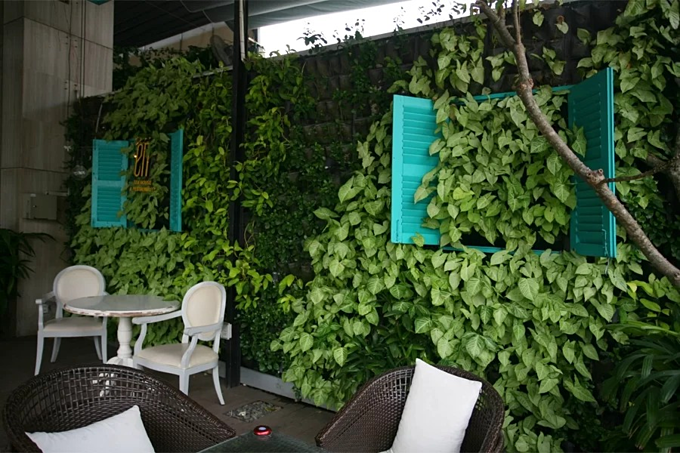 A Garden On The Wall That Is A Cafe In Downtown Saigon Vnexpress International