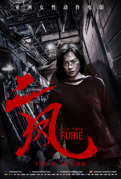 Poster of Furie in China.