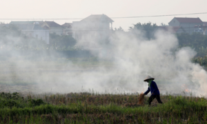 Burning of straw by rice farmers threatens flight safety at Hanoi airport