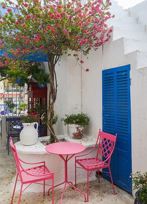Green shrubs and bougainvillea creepers are abundant in the café, just as they are in the Mediterranean, Tuan added.