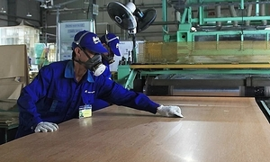 Saturday should be a holiday, Vietnamese workers assert