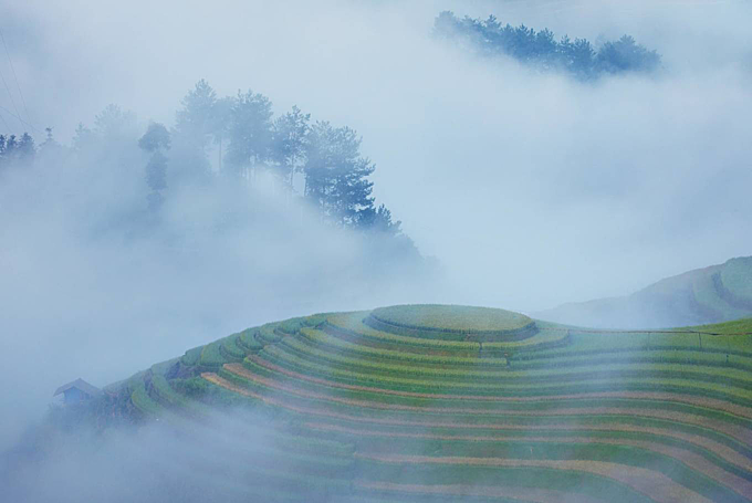 A photo of Mam Xoi Hill in Mu Cang Chai District in mist at 6 a.m.This field, which is part of La Pan Tan Village, has became a symbol of Mu Cang Chai, making its a must-stop-by destination for anyone who visits this upland area.