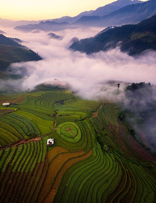Terraced fields near Mam Xoi Hill in La Pan Tan Commune.The rice fields locate around 1km above sea level and about 10km away from the center of Mu Cang Chai District.