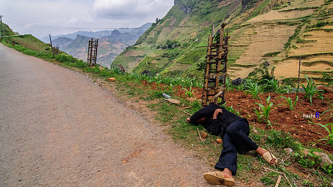Sometimes, you will come across many H Mong people walking on the pass but also catch the image of a HMong man who got drunk and sleep in the middle of the road.