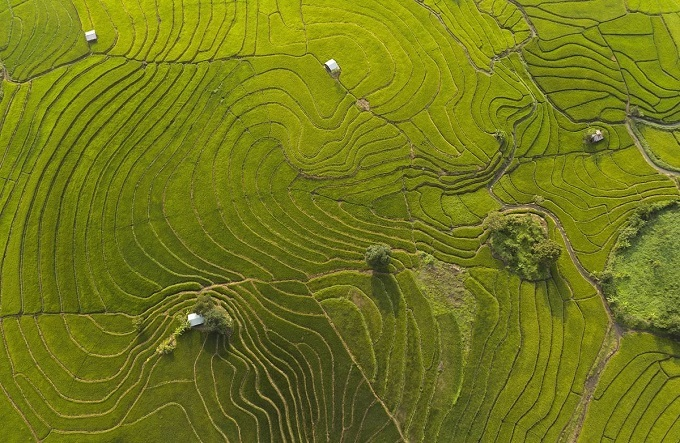 For many generations, the Jrai people have inhabited this region and cultivated the land surrounding these hills into a staircase-like structure to expand the fields for intensive farming.The passages interwoven between each field create shapes throughout the land, turning the landscape into a giant canvas of patterns.