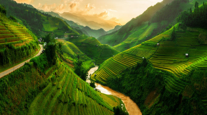 Mu Cang Chai in Yen Bai Province is famous for its iconic terraced rice fields which turn golden yellow during harvest season. Photo by Shutterstock/Hoang Nguyen.