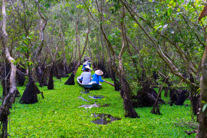 Tourists take a boat tour of Tra Su Cajuput Forest in Tinh Bien District, An Giang Province. Photo by Shutterstock/An Nguyen.