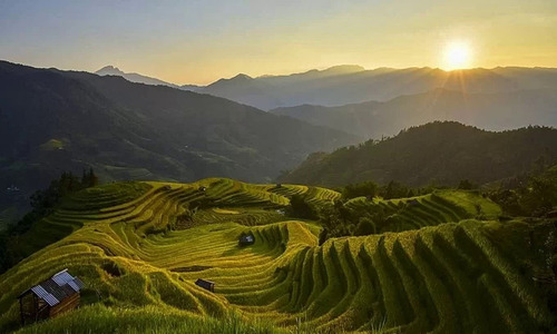 The golden glow of northern Vietnam's rice terraces