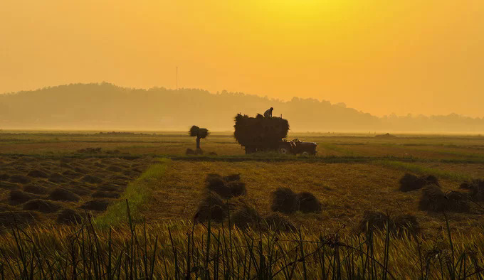 Photos highlight the unqiue countryside charm of Quang Ngai - 7