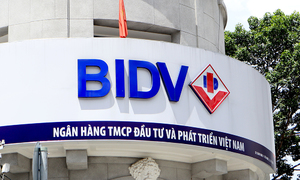 BIDV charter capital Vietnam's highest following stake sale