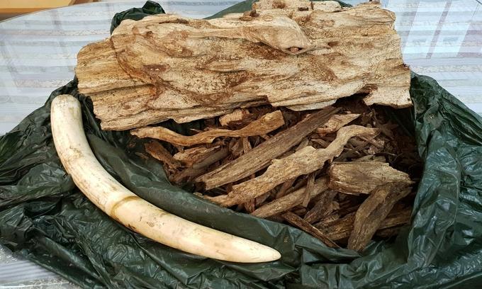 Man arrested with smuggled ivory, agarwood from Bangkok