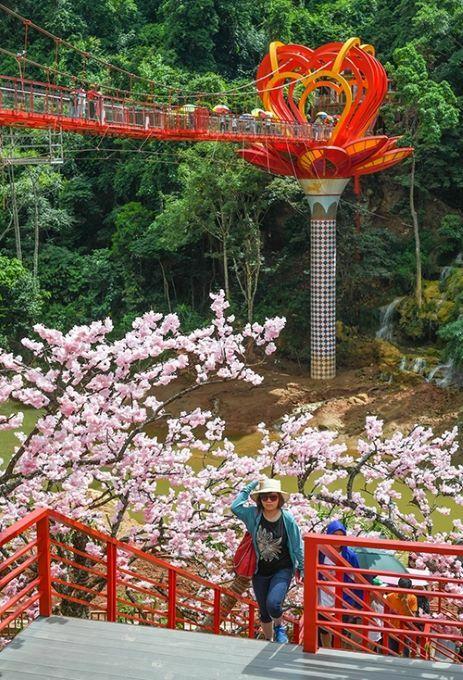 The 22m-high glass bridge near Dai Yem Waterfalls in Son La Province, northern Vietnam. Photo by VnExpress/Kieu Duong.
