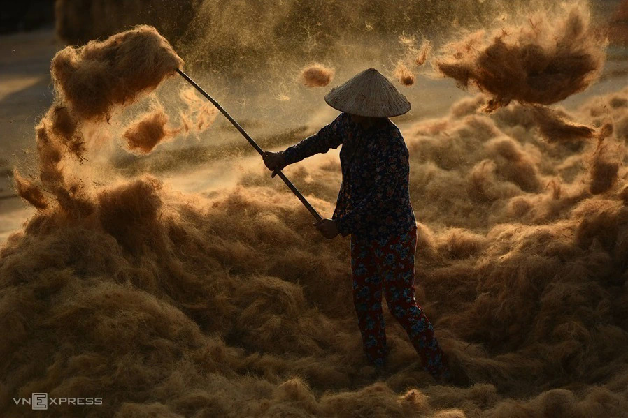 Prize-winning pictures show a life revolving around coconuts