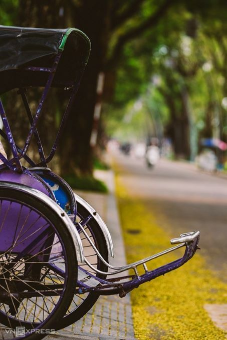 It is recommended to take a walk in the central streets, cycle or take a cyclo ride to enjoy the slow pace of life during this season.