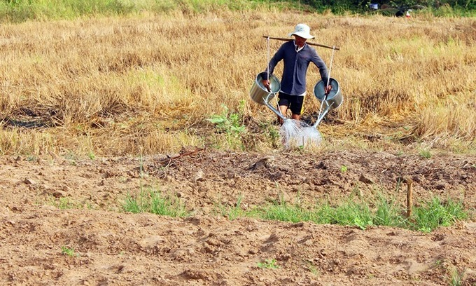 Vietnam joins hands with Mekong nations to fight drought