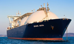 $4 bln LNG plant asking price too low: trade ministry