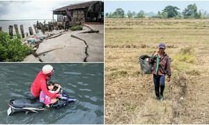 2019: When environmental disasters hounded Vietnam