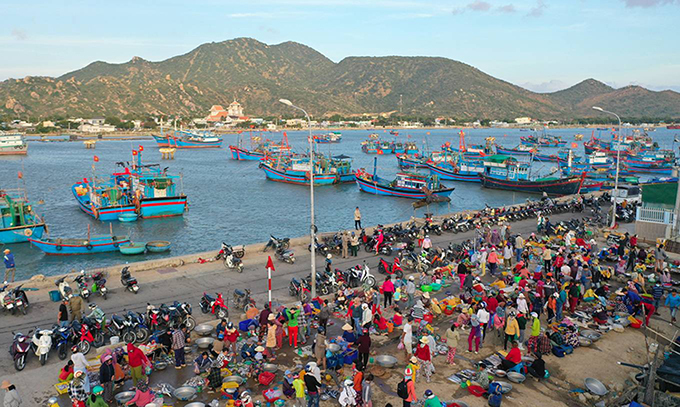 Originally called the Khanh Hai, the Nai seafood market acquires its name for locating right by the Nai lagoon, situating right between the Ninh Chu and Tri Thuy bridges, Ninh Hai Commune. This is the most famous seafood market in the province and is usually bustling in the evening, when boats with baskets of fresh seafood just docked and delivered right to the market right after.