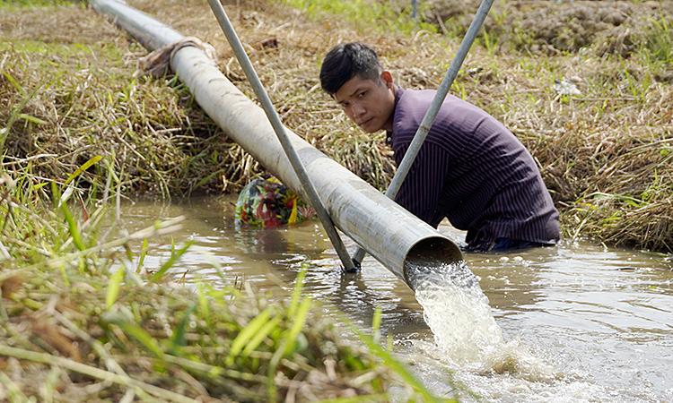 Huynh Van Linh pumps canal water into his field. Photo by VnExpress/Hoang Nam.
