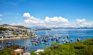 More S. Korean carriers descend on central Vietnam seaside