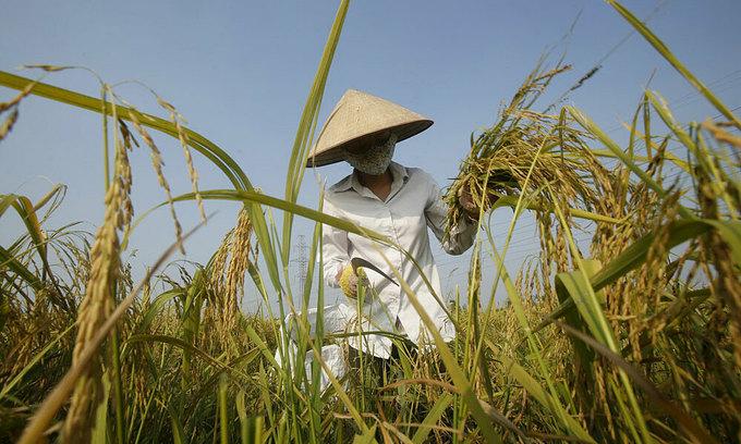 Vietnam eyes $300 bln exports in 2020