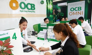 Japanese bank seeks 9.9 pct stake in Vietnam's OCB