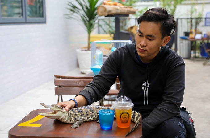Tran Duy Khang, 19, bring his crocodile pet to the shop.I have been raising this baby for nearly a year now after it hatched from egg. The crocodile is not dangerous at the moment since it is small. Oce it gets older and bigger, I will give it to some farms.