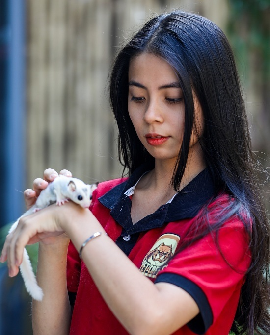 A staff is petting a dormouse.