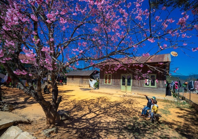 If Da Lat is too crowded with travelers, tourists can visit higher terrain such as Da Chais and Da Nhim communes of Lac Duong District to witness a more rug and raw beauty.