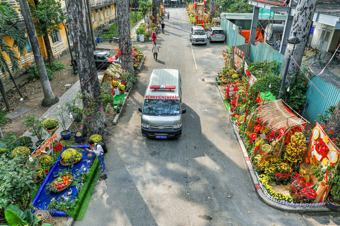 The 200-meter flowery path in Cho Ray Hospital (District 5, HCMC), with many pots of yellow apricot blossoms, chrysanthemums standing next to decorative Tet's shops, opens from January 7 to January 28.