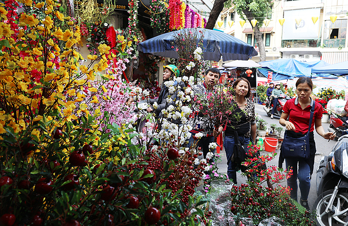Customers inspect fresh flowers in front of a shop on Hang Luoc Street, known as one of the oldest flower markets in Hanoi.Nguyen Thi Tan from Bac Ninh Province, a hour drive from Hanoi, said every year she travels dozens of kilometers from home to the Old Quarter to buy small peach branches and other Tet decorations in the house. Peach blossoms are an indispensable house decoration for Tet in northern Vietnam.