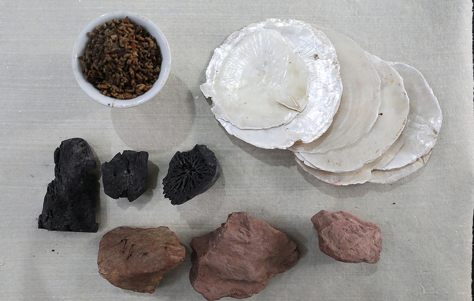 The original Dong Ho paintings did not have garish colors. They were warm and easy to the eye, all made from all natural materials: red from the rock on Thien Thai Mountain, white from the shell of scallops, black from the ash of burned bamboo leaves, yellow from flowers of the Japanese pagoda tree, and green from the bark of cajuput trees.
