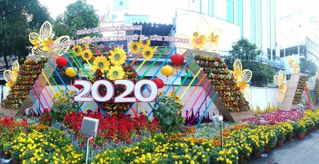 Mekong Delta hub set for Tet with blooming flower street