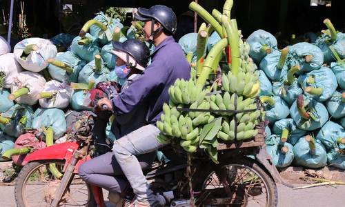 Central Vietnam market goes bananas for Tet