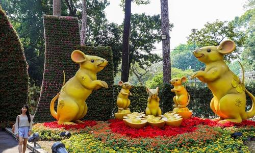 Saigon spring flower festival colorfully ushers in Tet