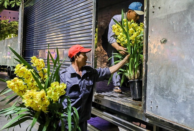 Expensive flowers such as orchids, rhododendron or yellow Mai, the traditional New Year flower in southern Vietnam, are loaded on trucks to transport them to tourist areas or brought to garden owners.