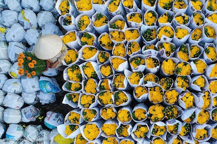 Flowers available for sale near Ho Chi Minh City. Photo by Nguyen Ngoc Thien.