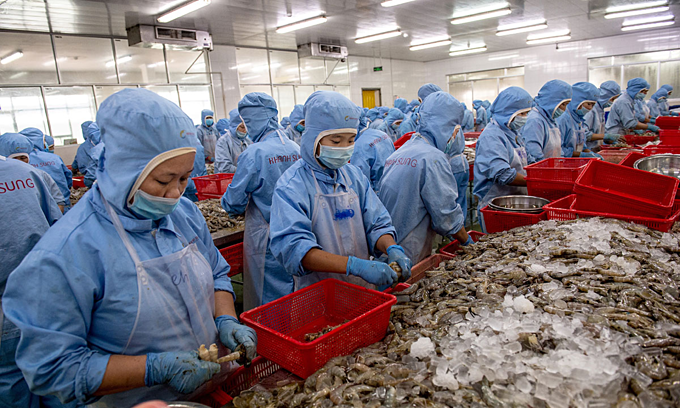 Coronavirus halts shrimp exports to China