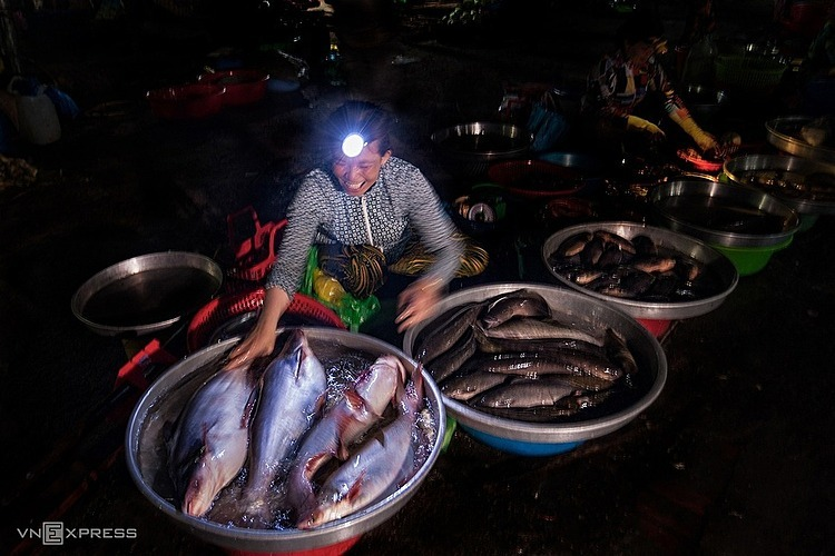 This arket is at its busiest at 2-3 a.m., selling products from fish such as basa, snakehead, perch to vegetables such as cabbage or carrots.