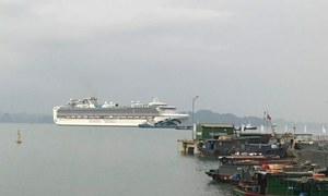 Can park, can't embark, Quang Ninh tells cruise ships from Covid-19 territories