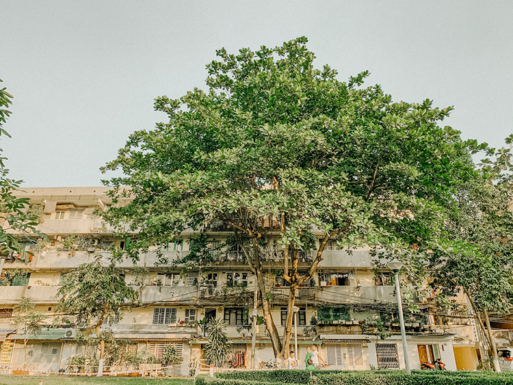 Binh Quoi-Thanh Da urban area is located in Binh Chanh District, about 8 km from city center and 5 km from Thao Dien area of District 2, home to the largest expat community, spreading over of 426 hectares (1,053 acres).