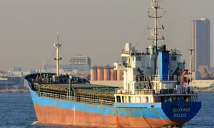 13 Chinese, Vietnamese nationals missing off Japan after ship collision