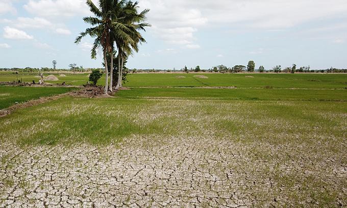Mekong Delta faces historic salinity threat
