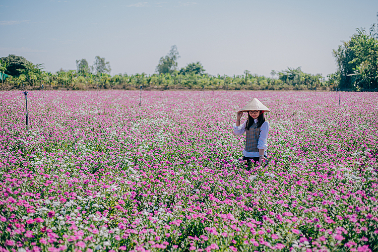[Caption]A girl takes photo on the field. Visitors are advised not to trample or pick up flowers as these blossoms are used for disease treatment, extremely important to local people.