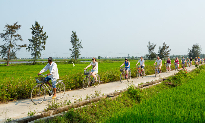 Foreign tourists ride bicycles through rice paddies in Hoi An ancient town, central Vietnam. Photo by Shutterstock/Andy Tran.