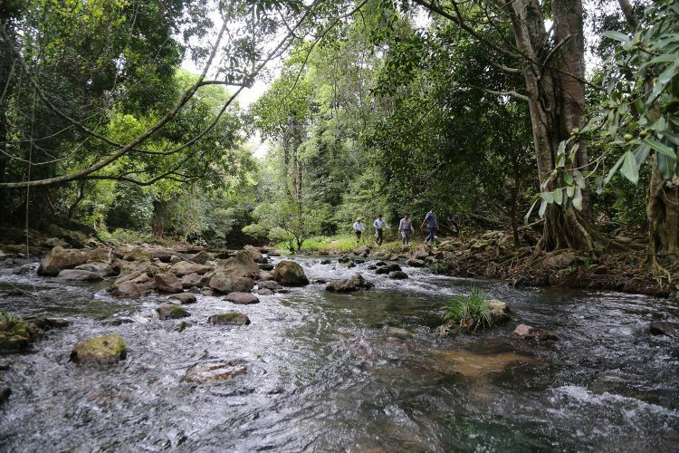 A few travelers find their way here to explore independently on a daily basis. Aside from its waterfalls, the area also boasts two caves, one dry and the other wet.