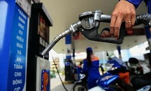 Jan-Feb petroleum exports plummet