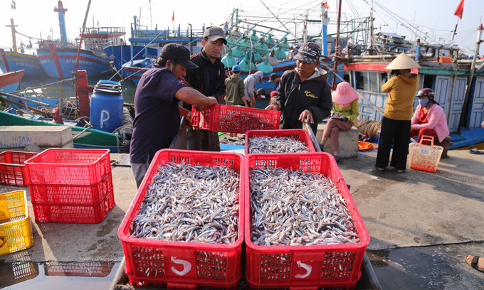 Seafood exporters lose half of all orders to pandemic
