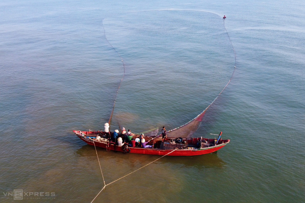 This year, the crustaceans gather in abundance near the shore. Many fishing boats carry over ten fishermen to steer hundreds-of-meter-long close-knit fishing nets.