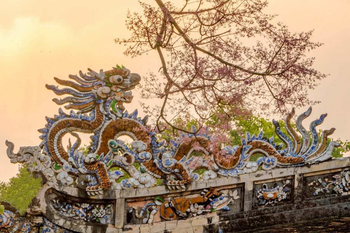 Branches of ngo dong flowers add a faint pink to the imperial landscape and compliment the coiled dragon on the roof of Thai Hoa Palace.